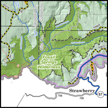 Forest Roads and Logging Roads Map of Coconino Wilderness Arizona